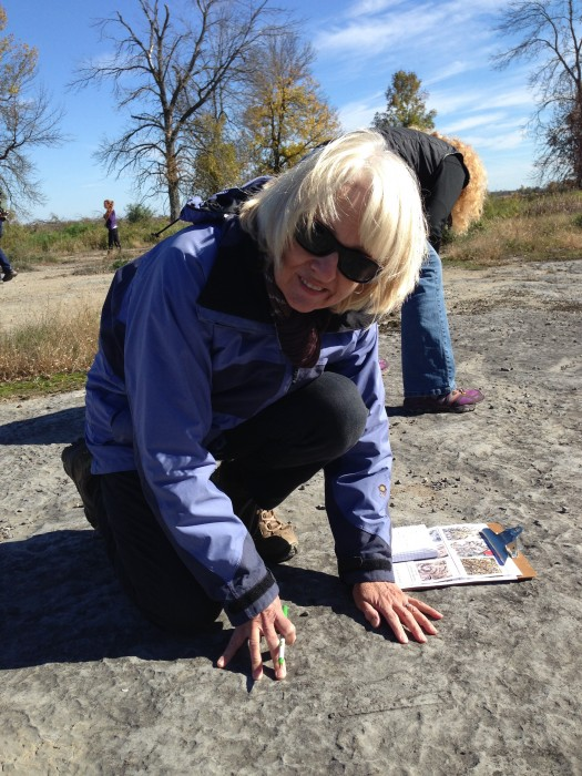 Maureen checking  rocks on the alvar