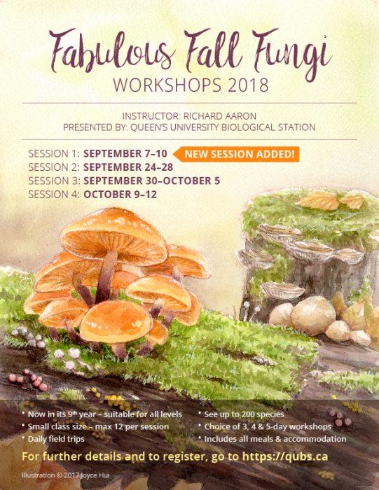 2018 Fabulous Fall Fungi  poster