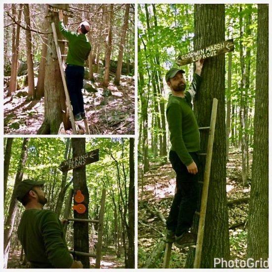 Replacing signs on the Macnamara Trail