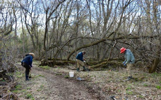 Planting on the Macnamara Trail