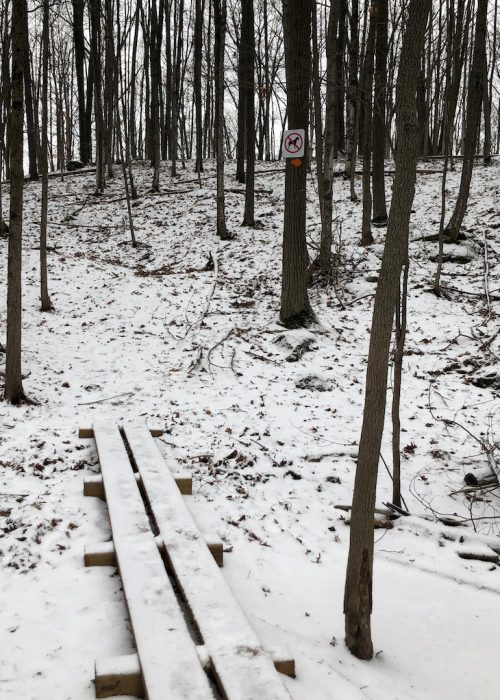 """No dogs"" on the Macnamara Trail"